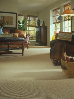 carpet flooring in bel air